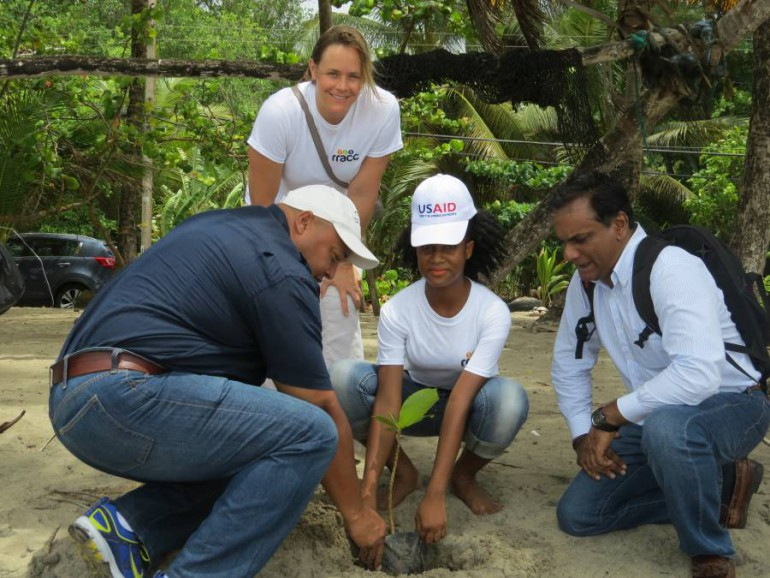 usaid_ reforestation