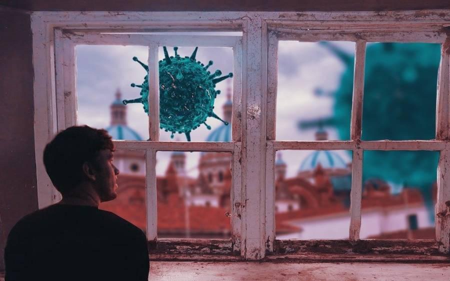 Covid 19 Coronavirus Virus Infection Disease House Window Man Person fernando zhiminaicela Pixabay.'